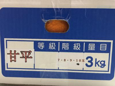Kanpei_17022202